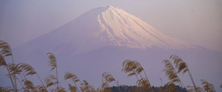 Japan Day I: Kawaguchiko